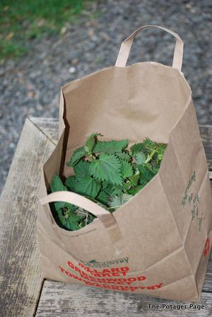 Bag of Nettles